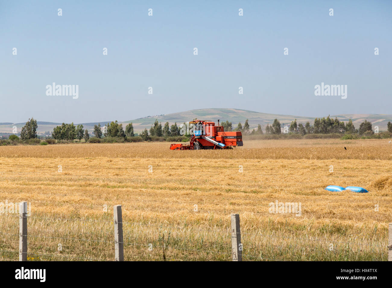 Northern Morocco.  Mechanized Farming in the Rif Region. - Stock Image