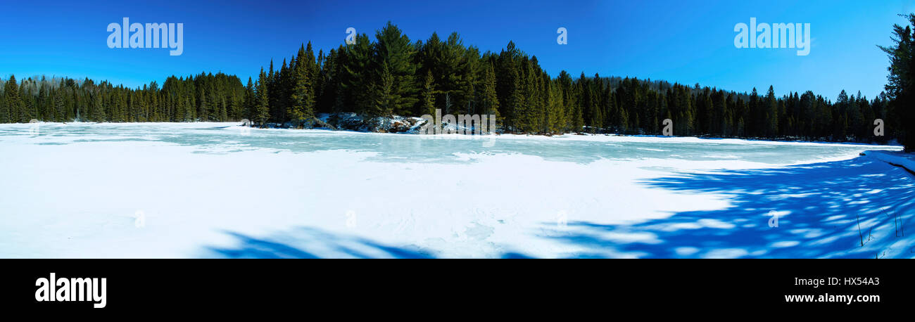 Algonquin Provincial Park, Ontario, Canada in winter. Panoramic view. - Stock Image