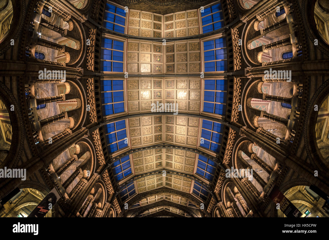 Natural History Museum London central hallceiling wide angle - Stock Image