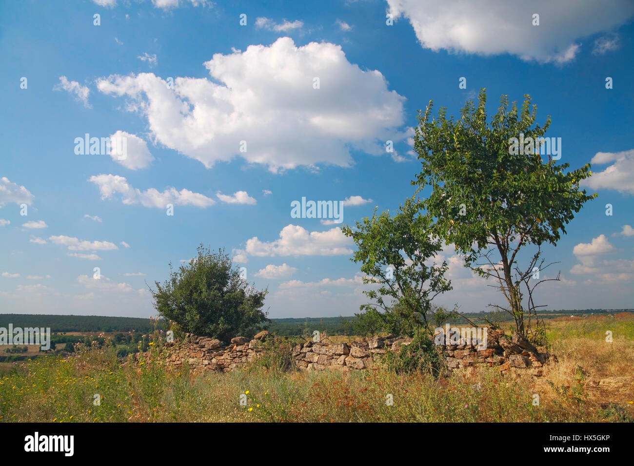 Rural landscape, a ruined fence made of natural stone, bush, pasture, in the background against the blu sky with Stock Photo