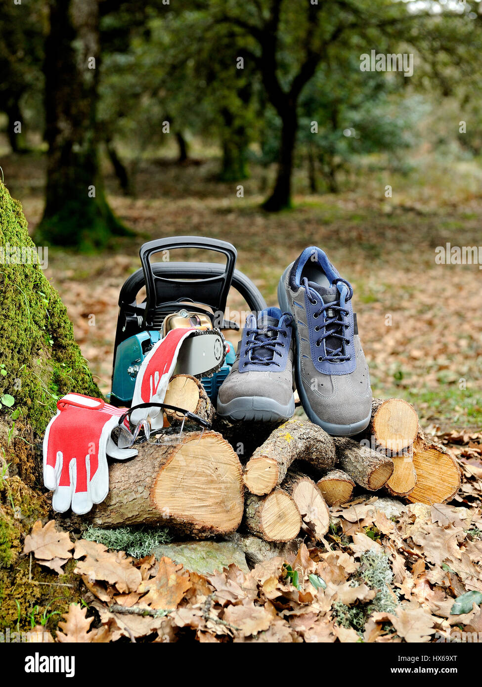 Shoes, protection gloves and glasses to safely use the chainsaw to cut wood in the forest. Stock Photo