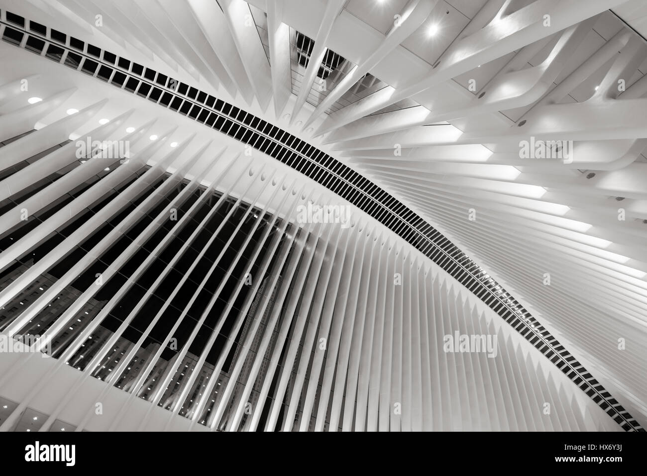 Interior of the Oculus, World Trade Center Path Station (Black & White) at night, Manhattan Financial District, Stock Photo