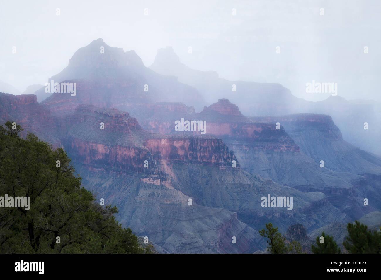 Rain storm. Bright Angel Point, North Rim. Grand Canyon National Park. - Stock Image