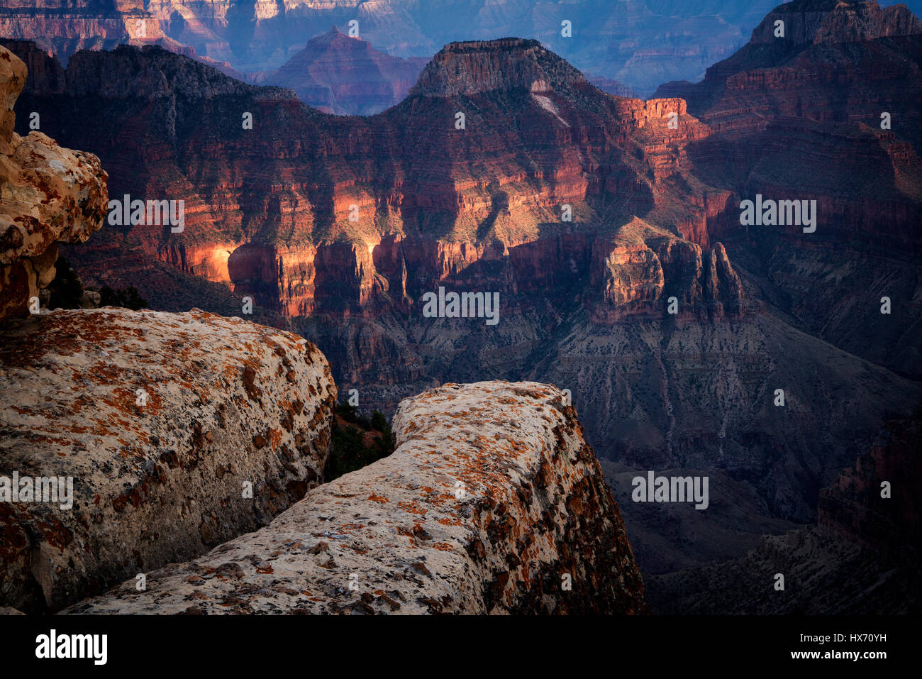 View of Grand Canyon from Bright Angel Point. North Rim of Grand Canyon National Park, Arizona Stock Photo