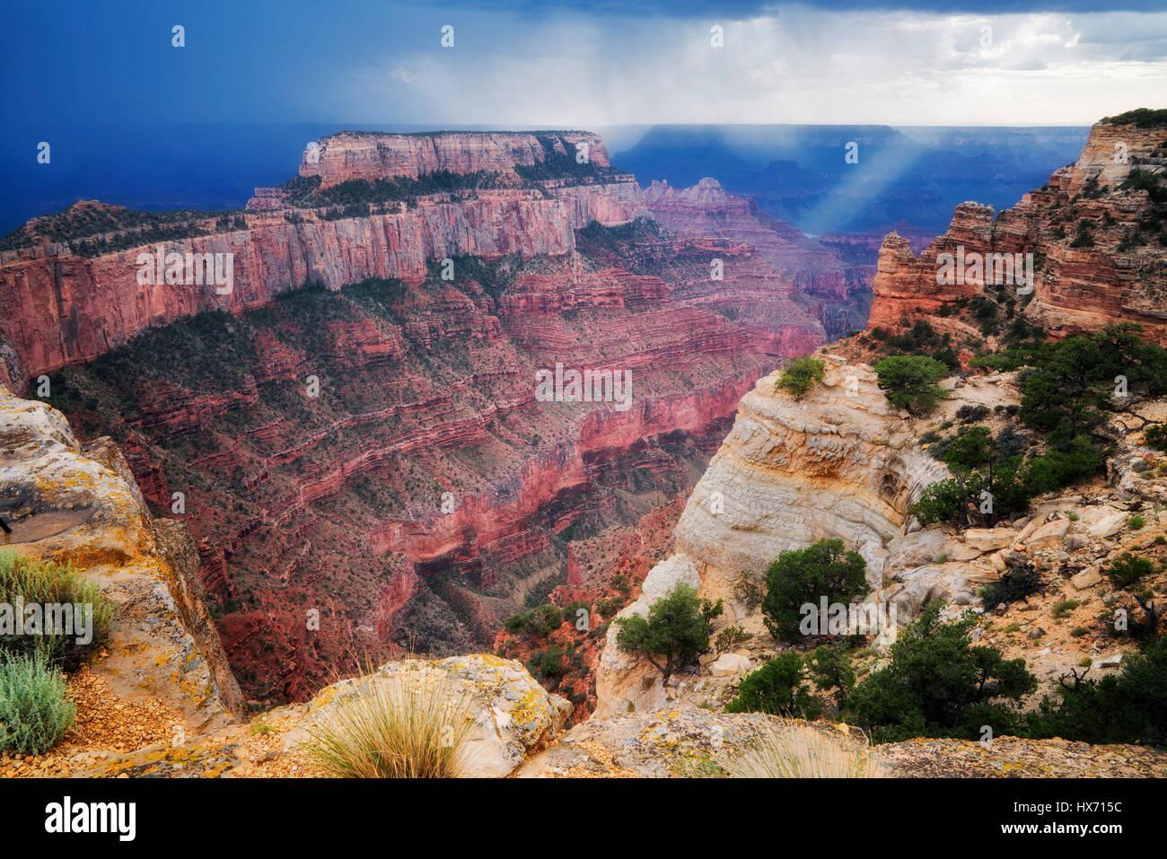 Thunderstorm and shaft of light at Cape Royal. Grand Canyon National Park, Arizona - Stock Image
