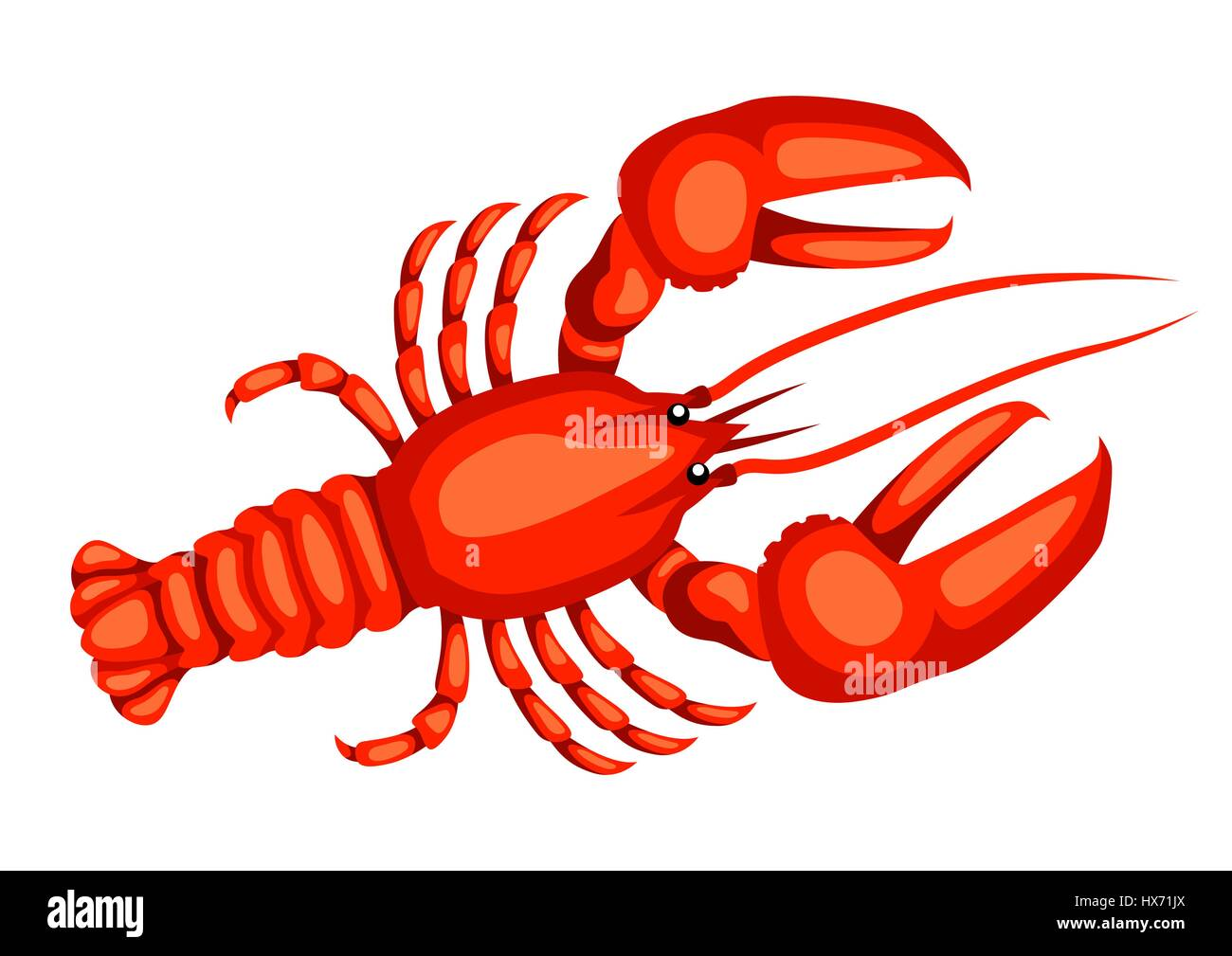 Red lobster. Isolated illustration of seafood on white background - Stock Vector