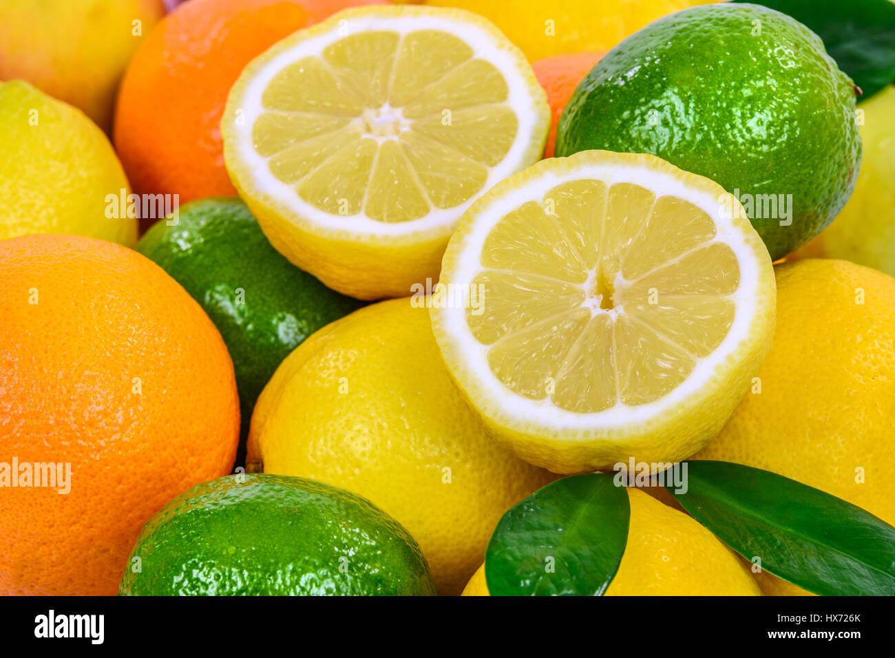 Beautiful background with various fresh citrus fruits. - Stock Image