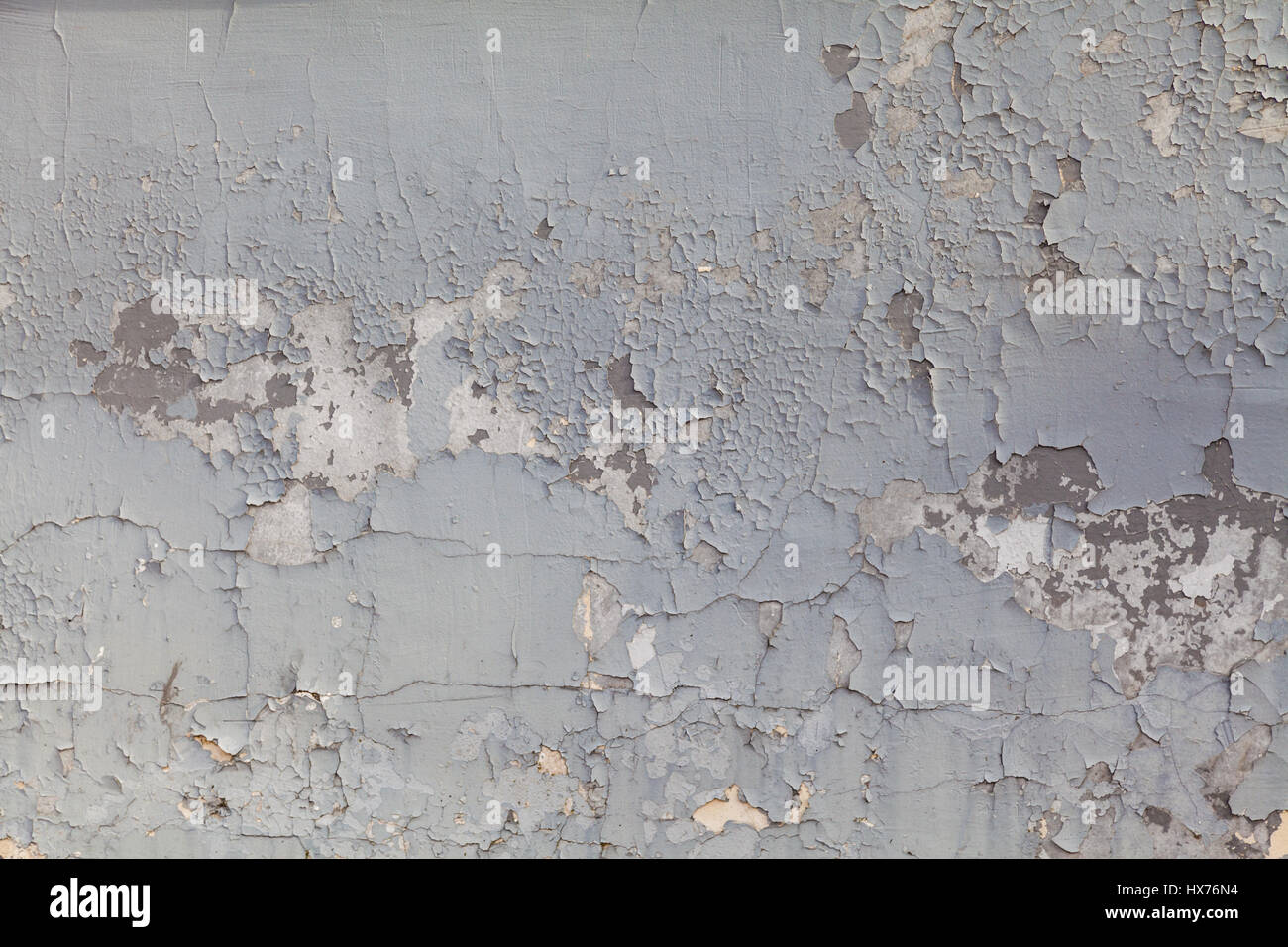 grey textured wall of old paint Stock Photo 136612592 Alamy