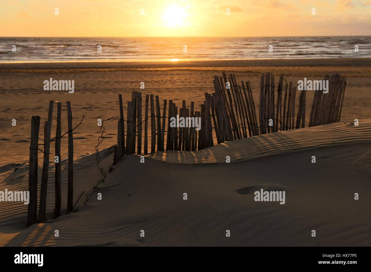 sunset at the Dutch North Sea coast - Stock Image