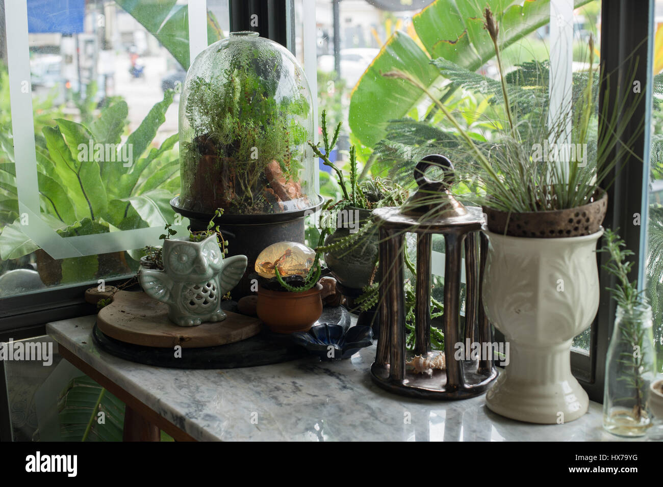 Small Terrarium Plants Enclosed In Glass Capsule Stock Photo