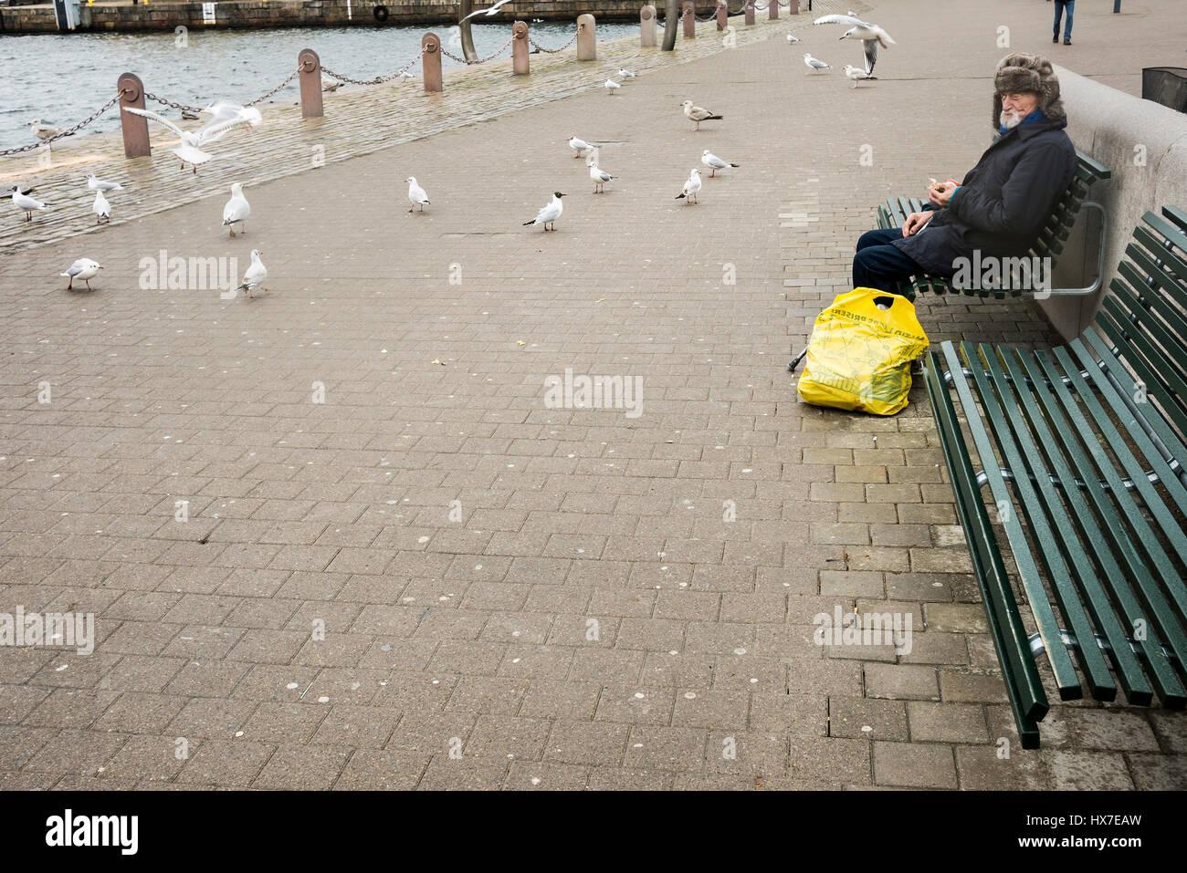 Feeding the birds - Stock Image