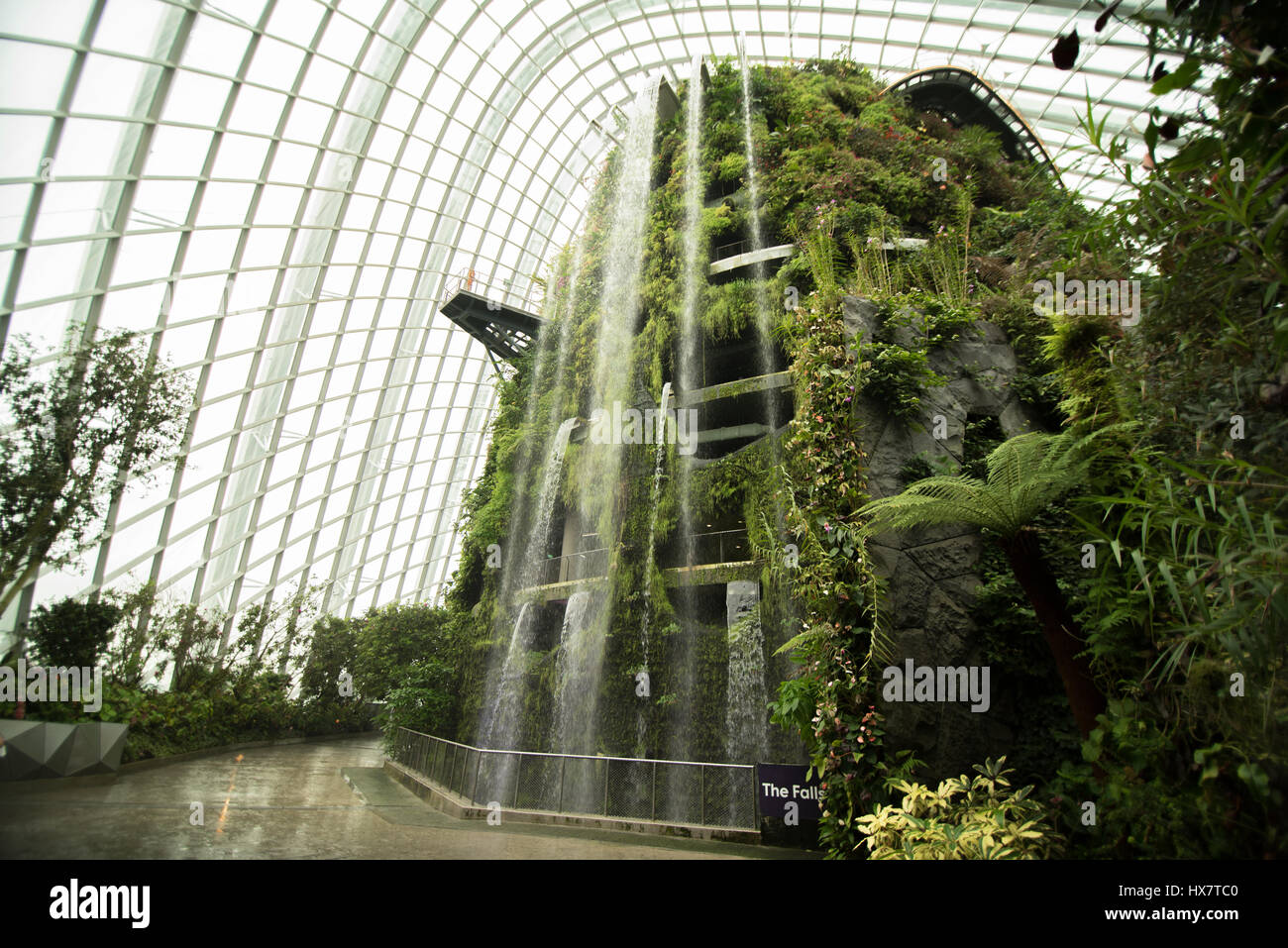 garden by the bay, flower dome, Singapore - Stock Image