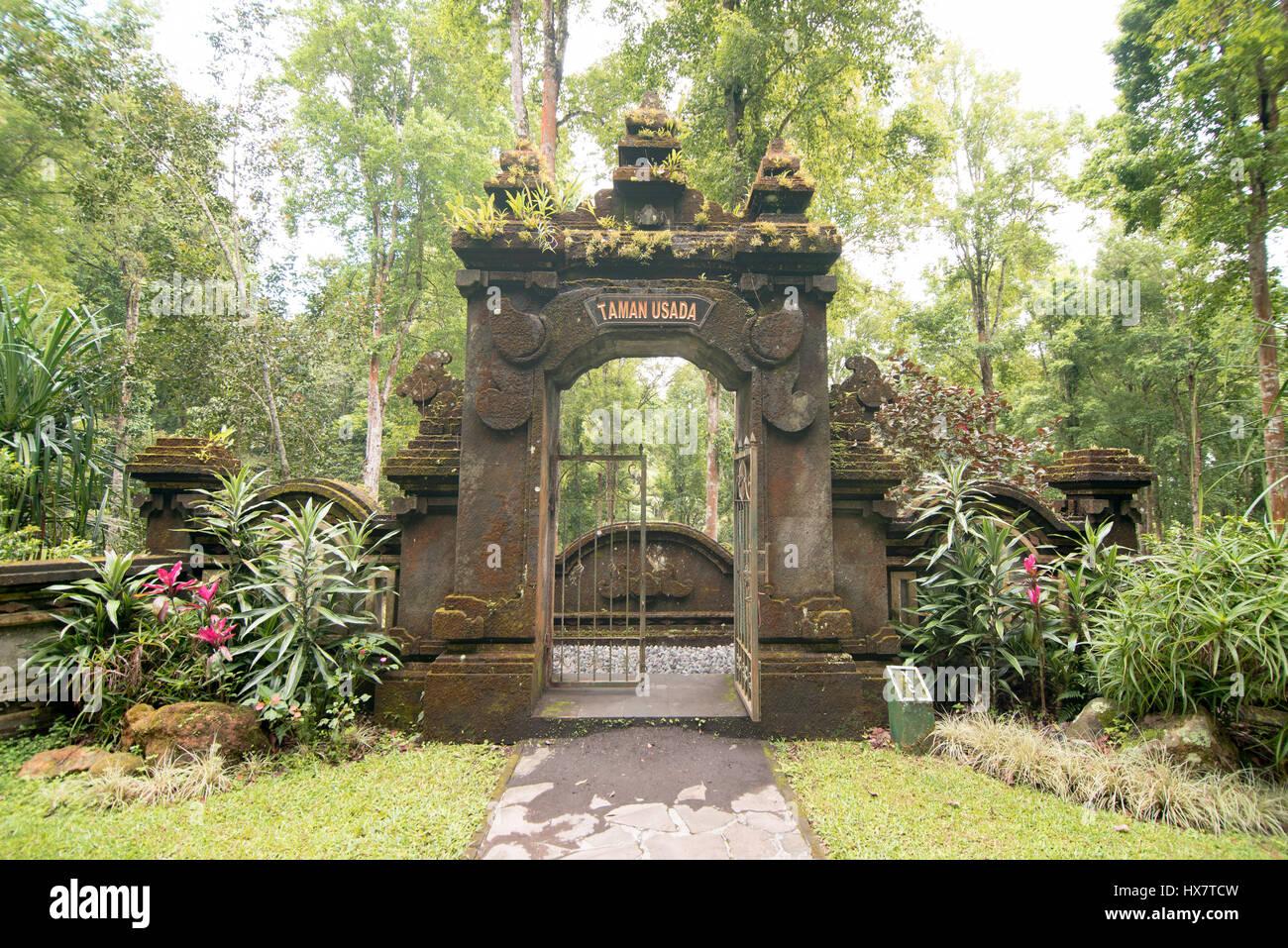 Taman Usada, Kebun Raya Bali in Ubud - Stock Image