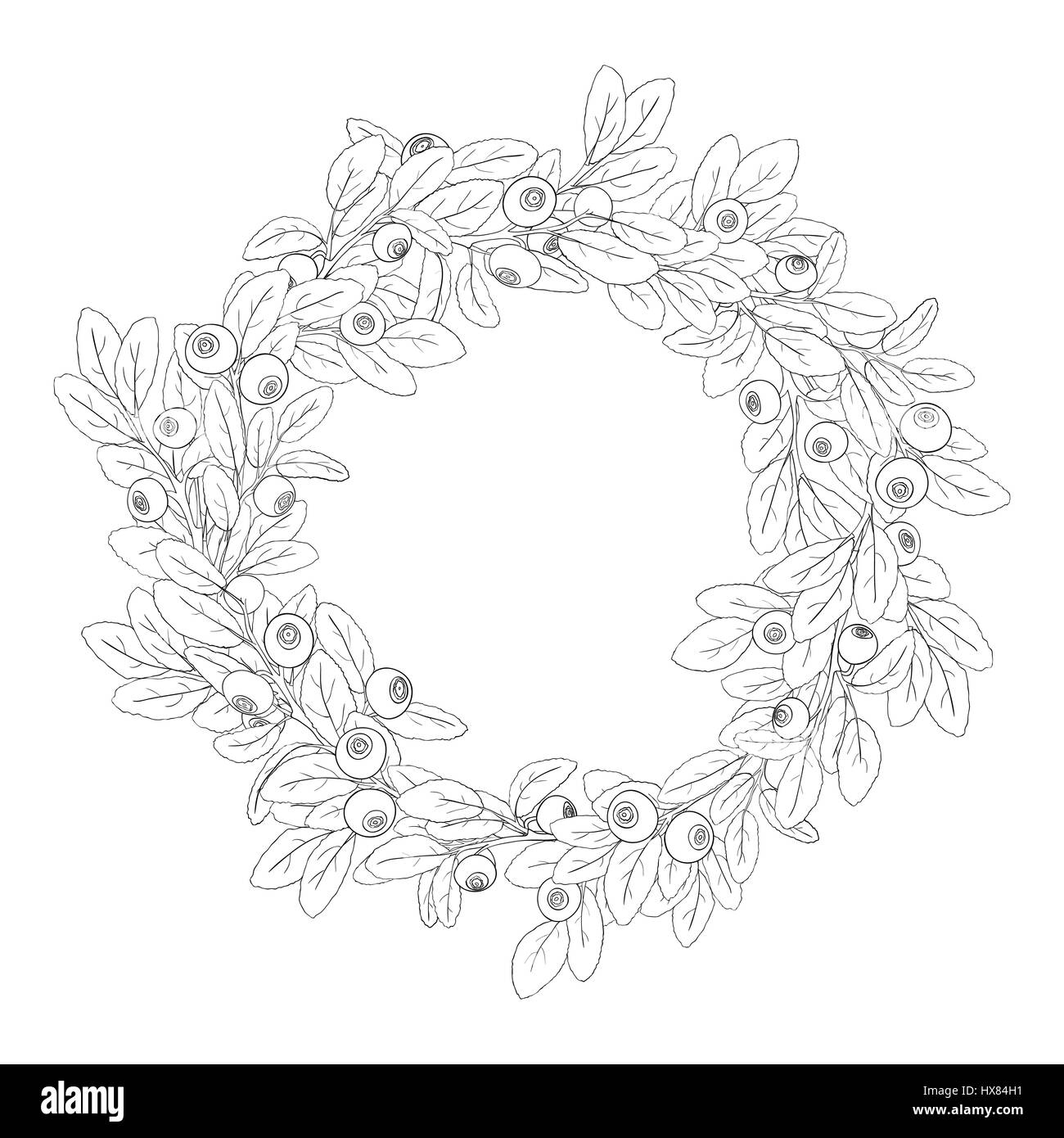 Round Wreath Or Frame Of Blueberry With Berries On A White Background The Branches Are