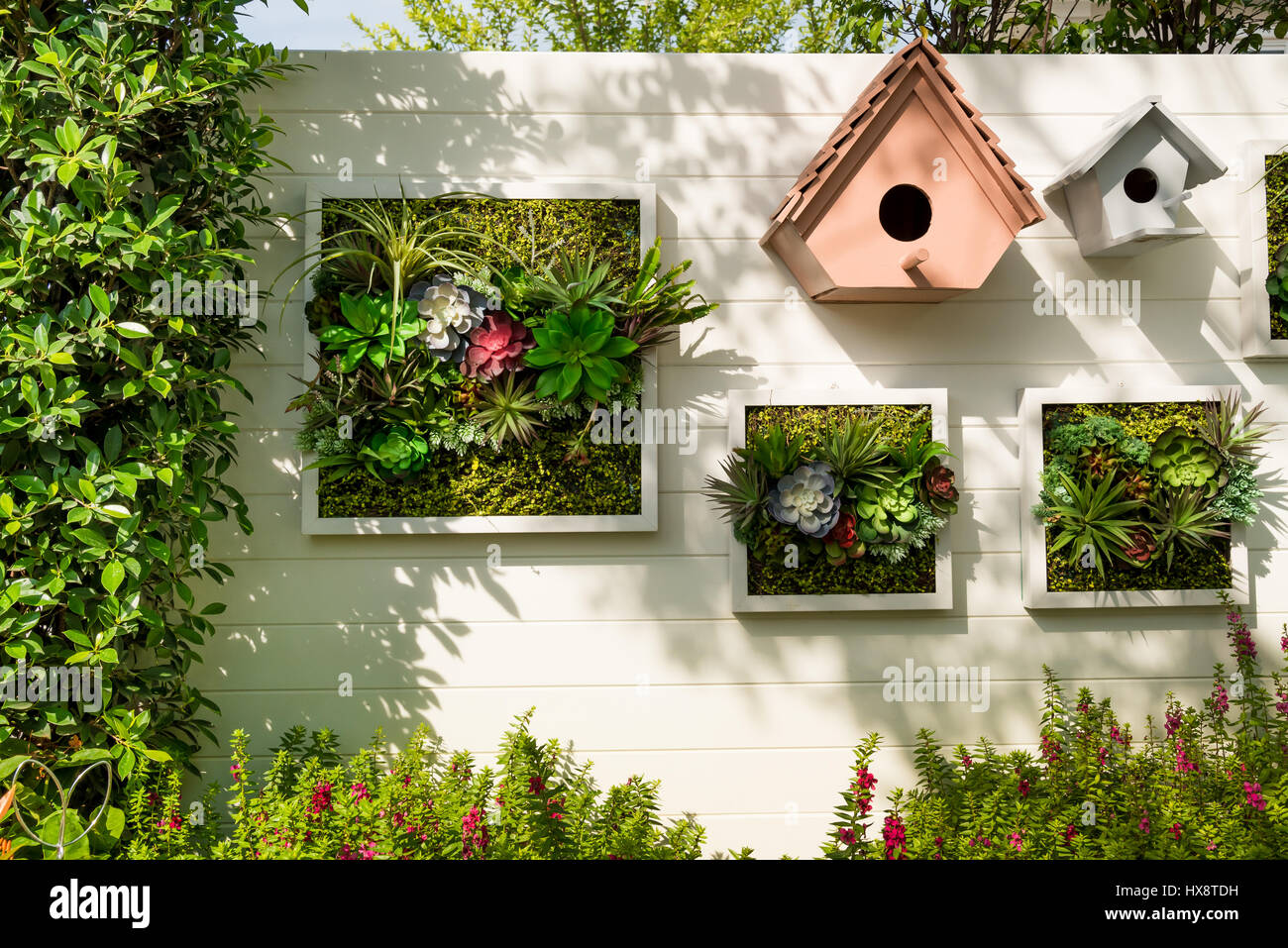 Decorated Wall Vertical Garden Idea Stock Photos & Decorated Wall ...