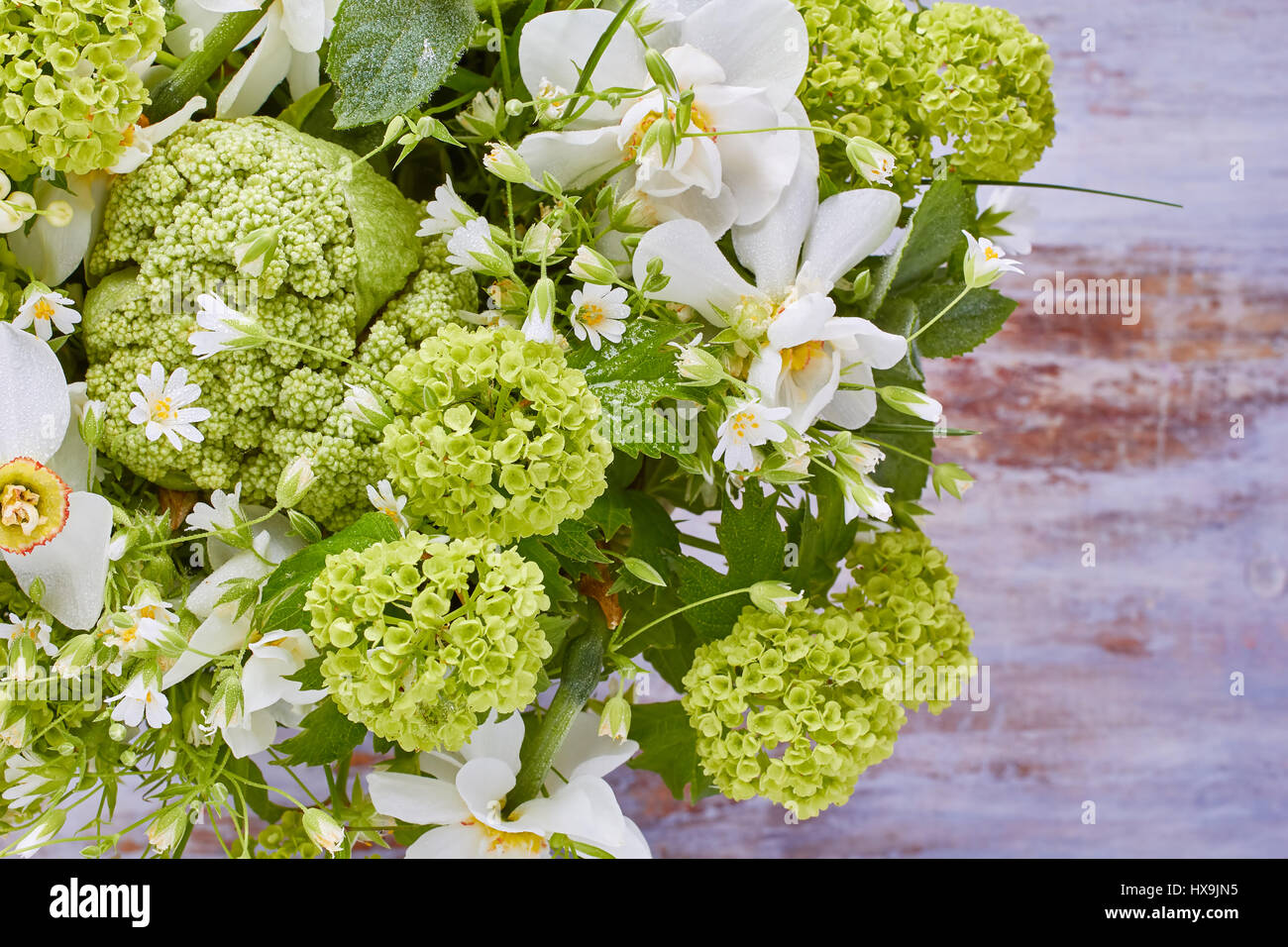 Close up of various fresh spring flowers stock photo 136665905 alamy close up of various fresh spring flowers mightylinksfo