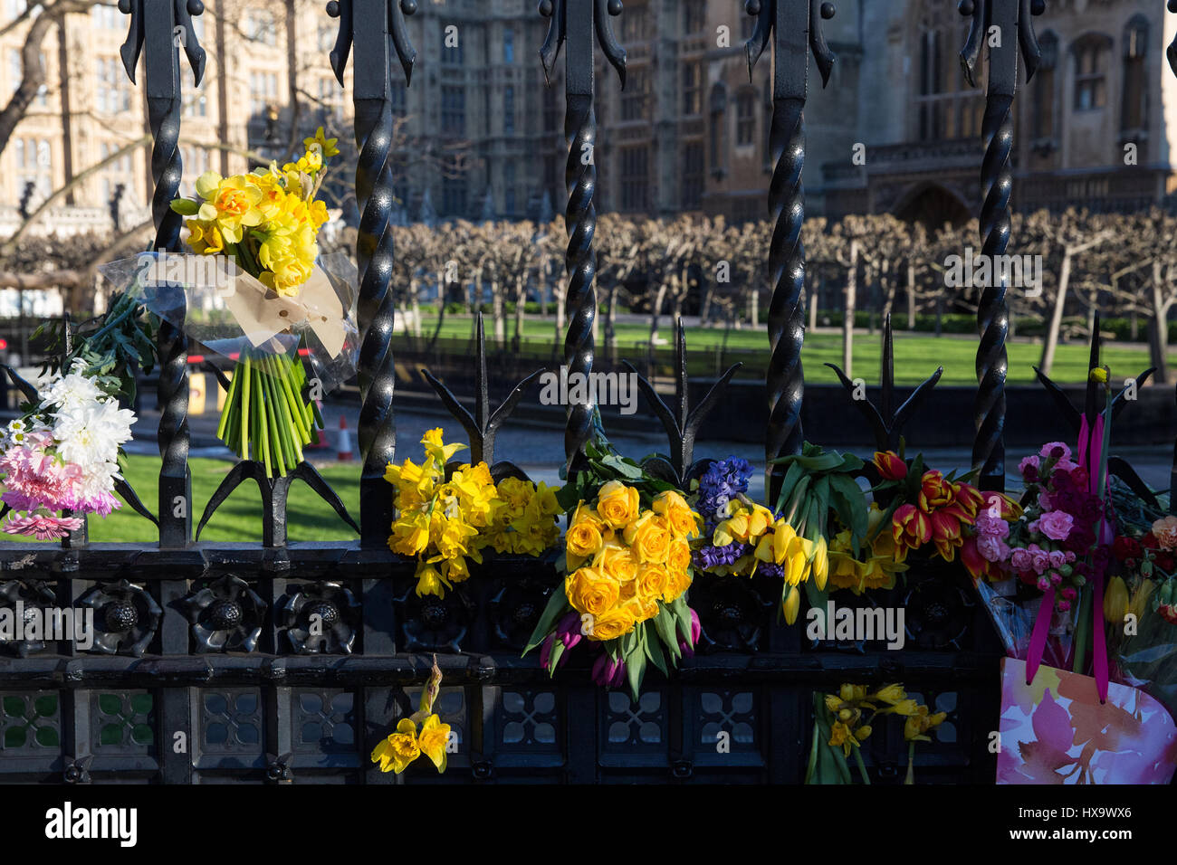 London, UK. 25th Mar, 2017. Spring flowers arranged outside the perimeter fence of the Palace of Westminster in - Stock Image