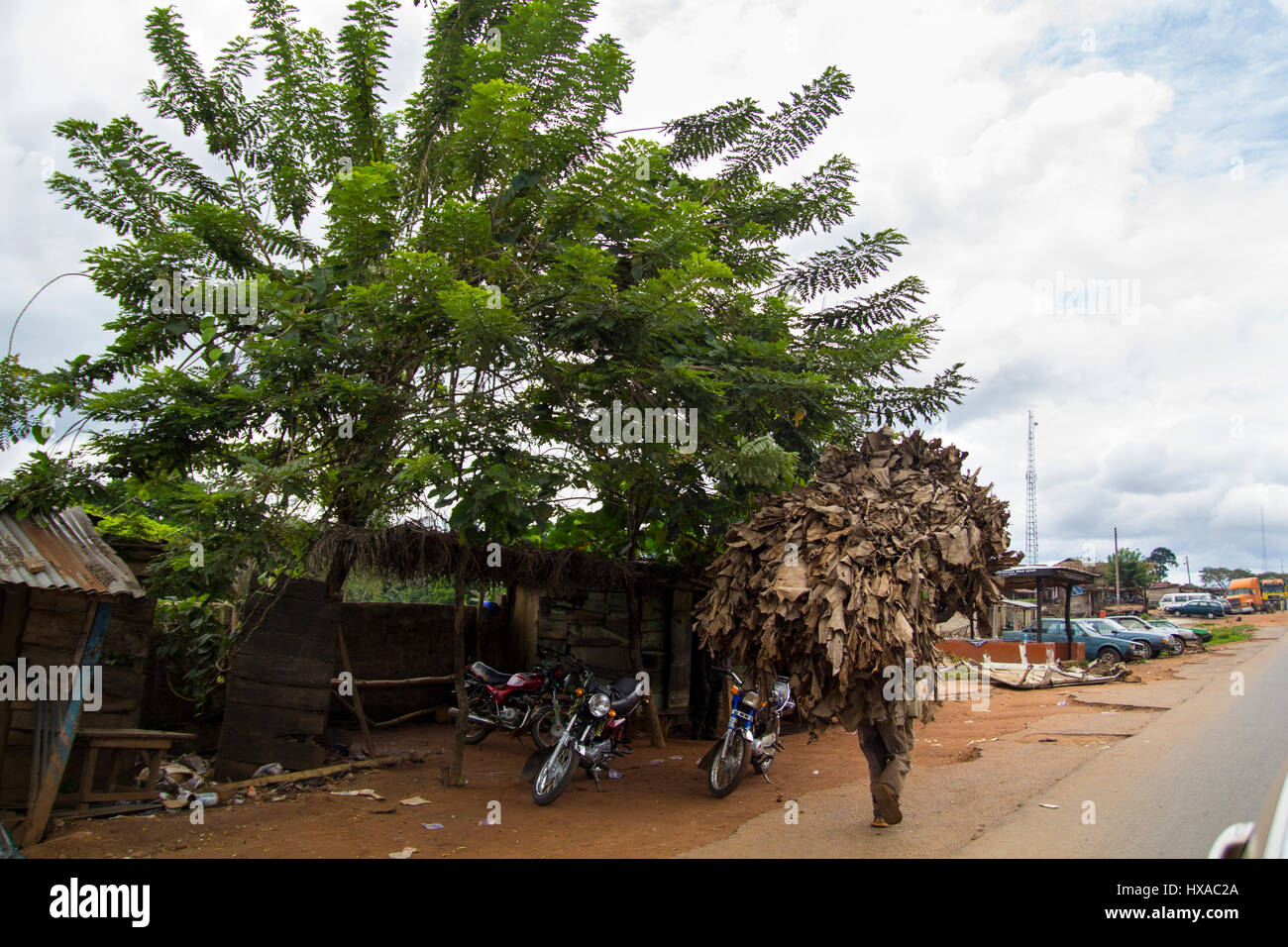 Single man carrying tobacco leaves in the head, in a road at the city of Lagos, the largest city in Nigeria and - Stock Image