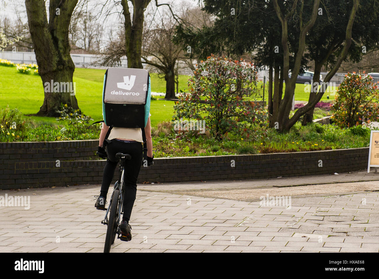 Deliveroo food delivery employee man riding a push bike with a food delivery box on his back. - Stock Image