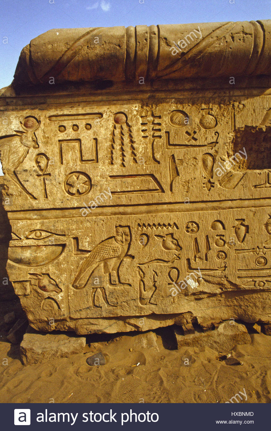 Kom Ombo Ancient Egyptian Hieroglyphs Deep Cut Sharp Symbols Seated