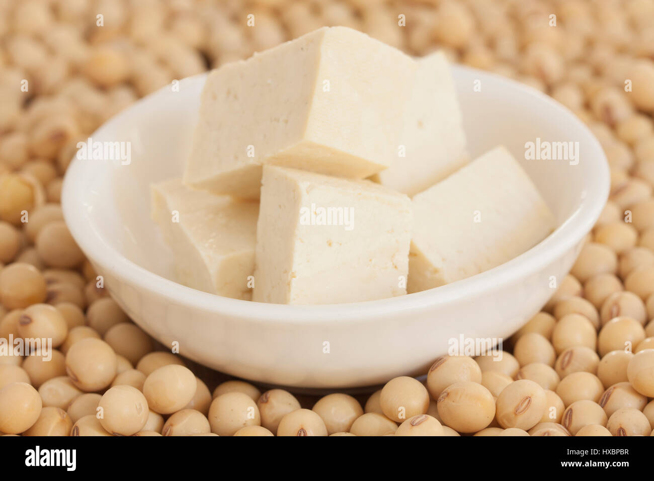Variety of Soy Products: tofu and soya beans - Stock Image