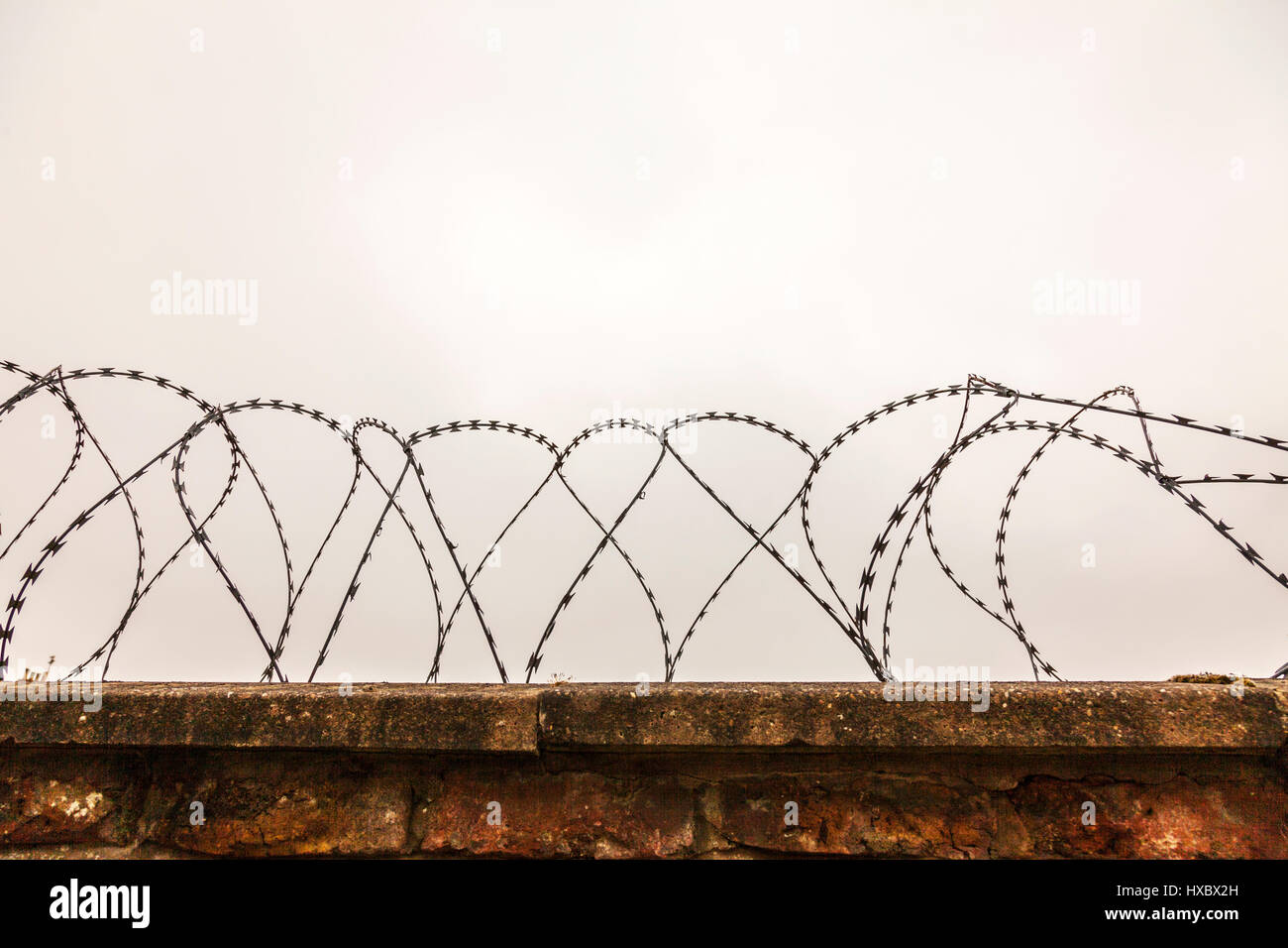 Razor wire security fence protection from burglars secure wall prison security razor wire fence sharp deterrent - Stock Image