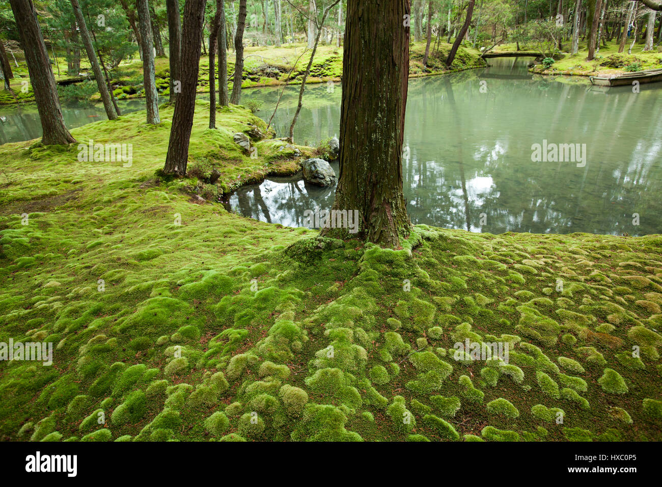 The Moss Garden At Saihoji Temple Is One Of The Few Temples In