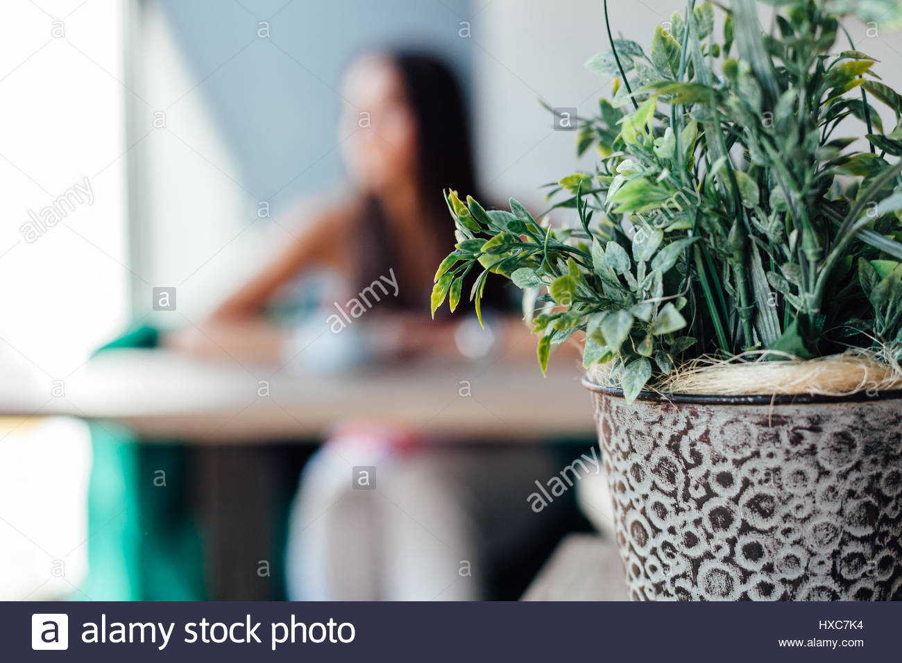 Cafe background with copy space. Young woman in a cafe. - Stock Image