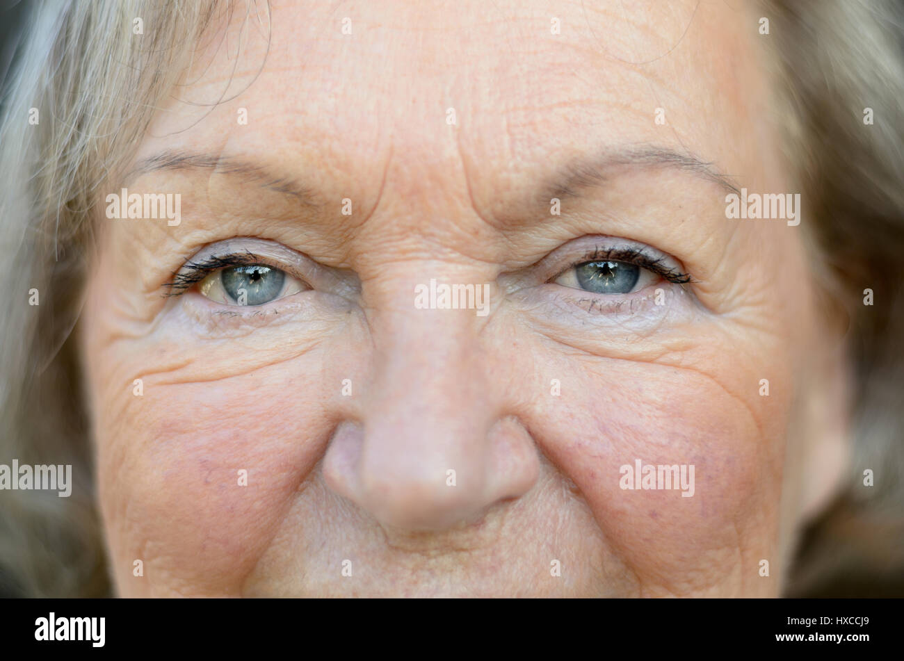 Close up on the aged and wrinkled face of an attractive senior woman with lovely blue eyes and greying blond hair - Stock Image