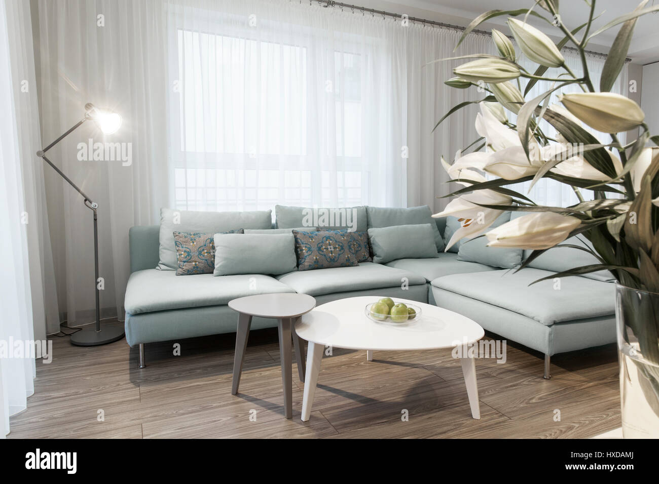 Modern interior of a small private apartment, sitting room, sofa and ...