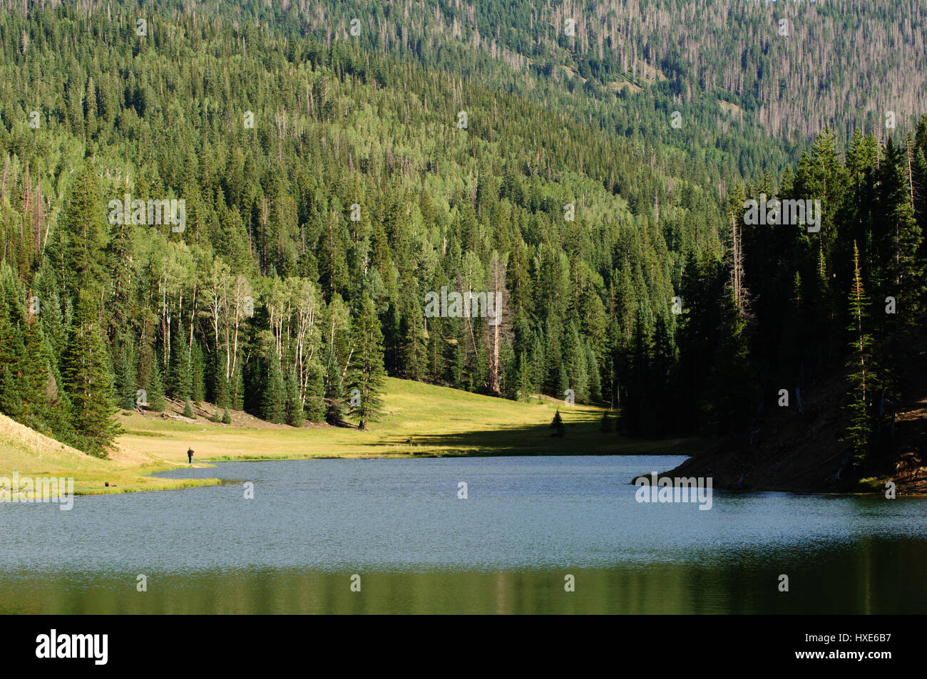 A lone fisherman enjoys the little reservoir at Anderson Meadow in Utah. - Stock Image