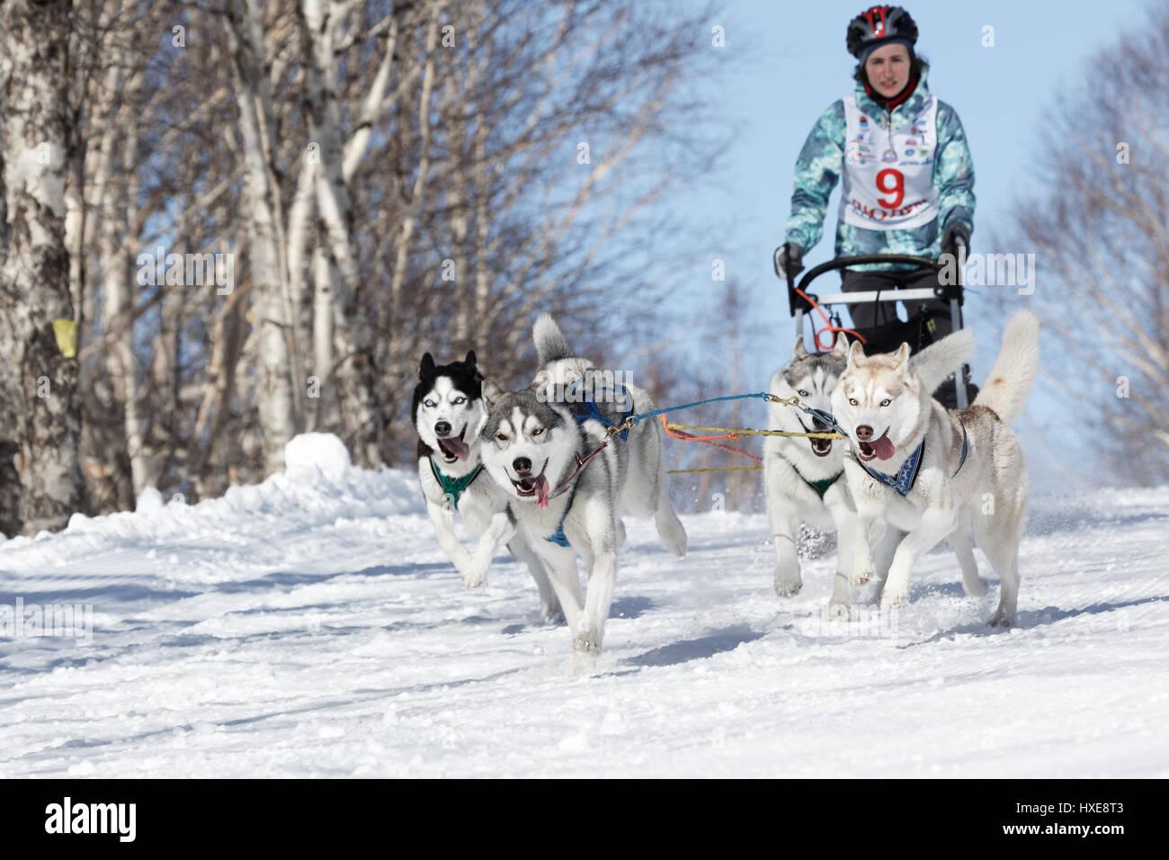 Kamchatka Peninsula, Russia: Kamchatka Kids Competitions