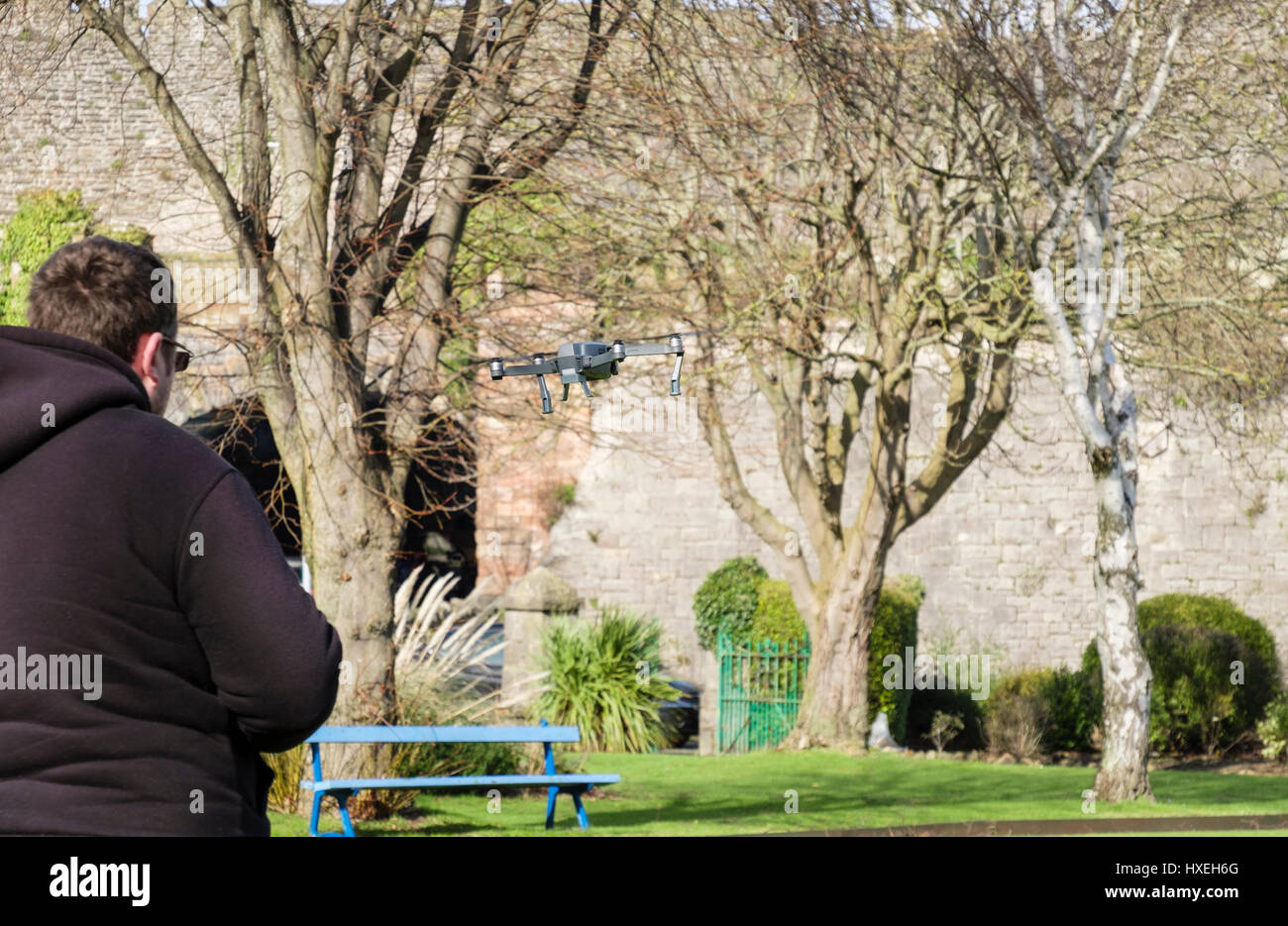 Man flying a radio controlled small toy drone in a park. Conwy, Wales, UK, Britain - Stock Image