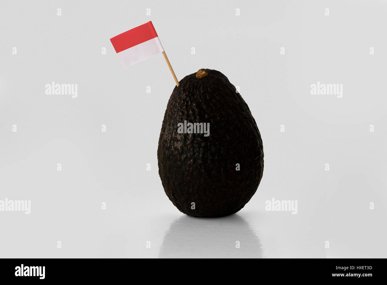 Isolated avocado with Indonesian flag - Stock Image