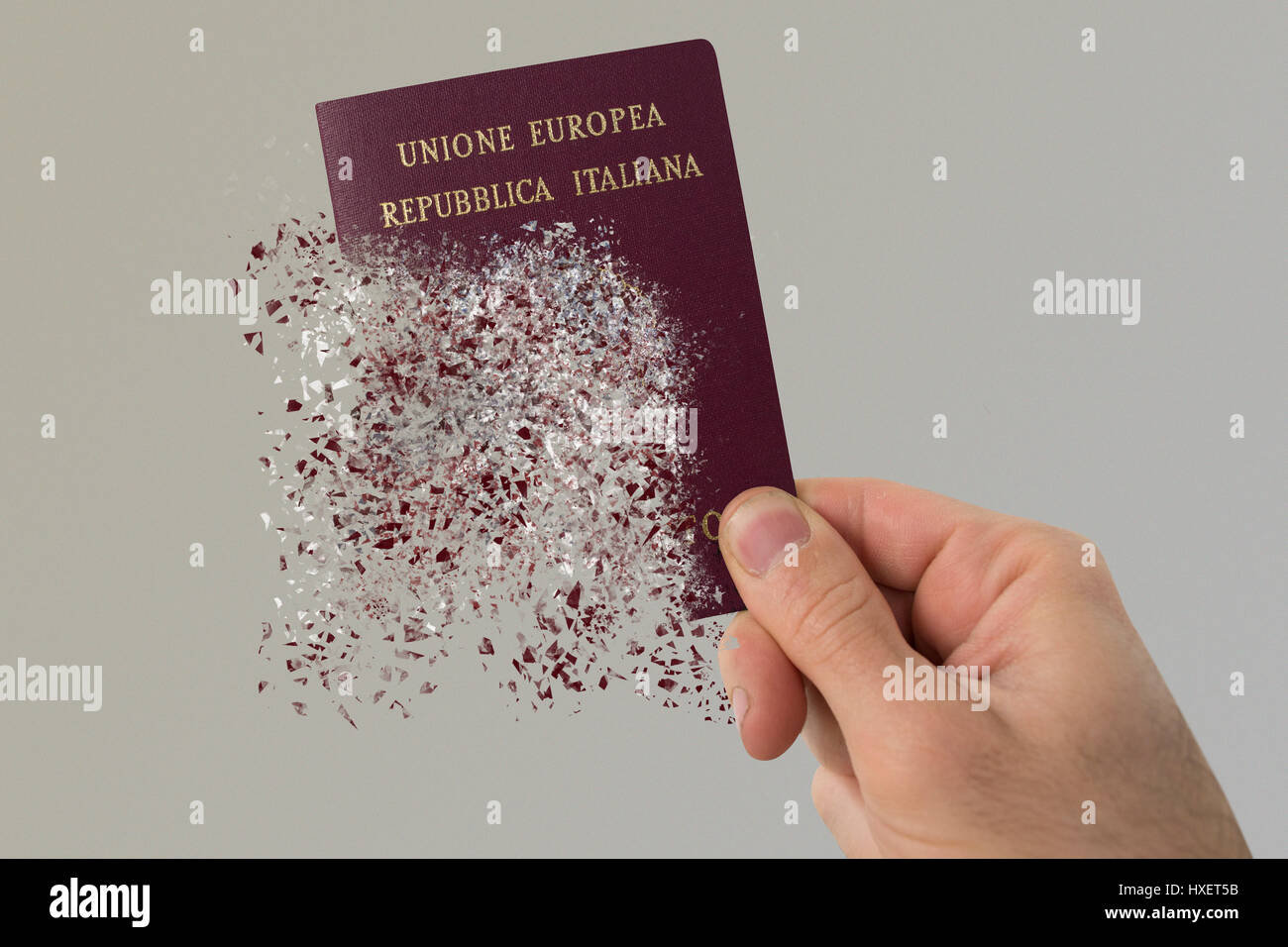 Italian passport pulverizes in a man's hand - Stock Image