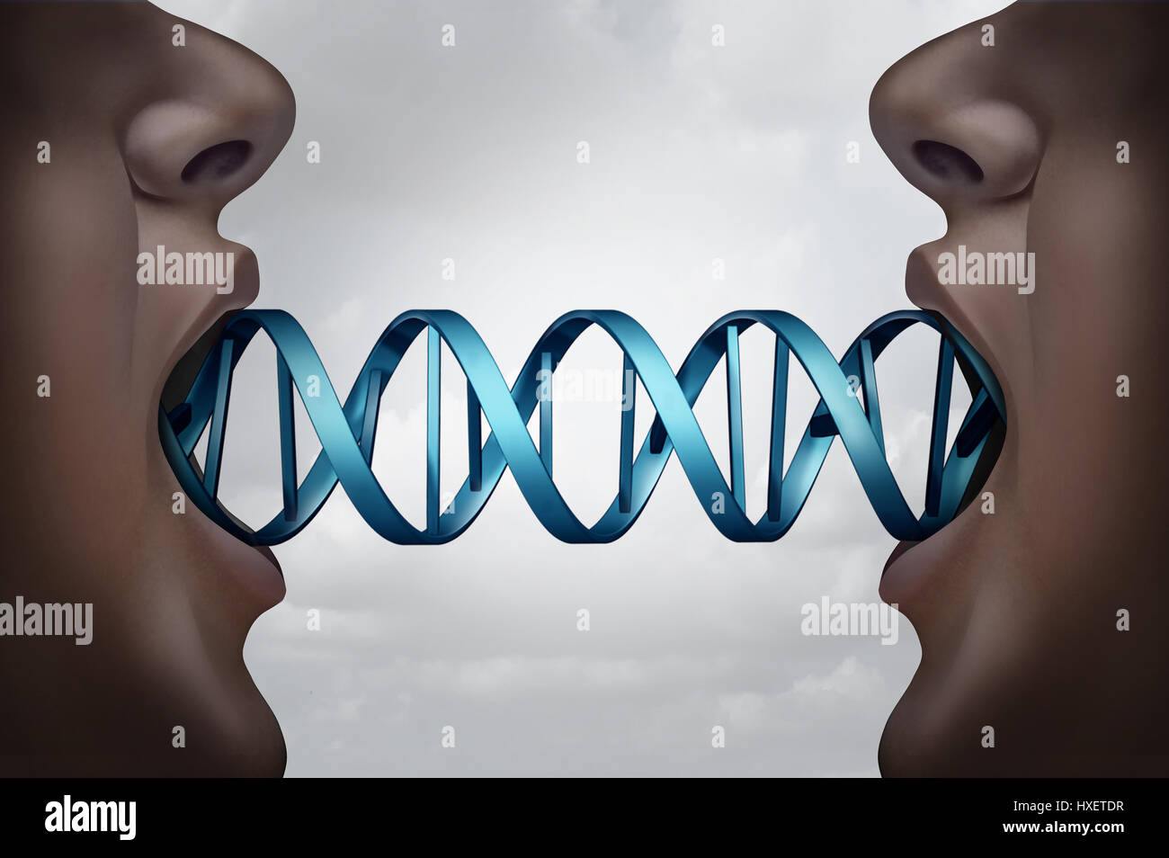 Gene cloning and DNA medical clone technology concept as clones with a double helix molecular structure connecting - Stock Image