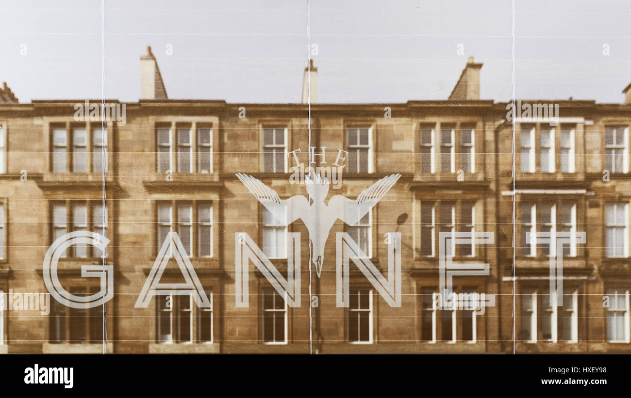 Gannet restaurant Finnieston Glasgow the gentrified area of the city tenements reflected in window - Stock Image