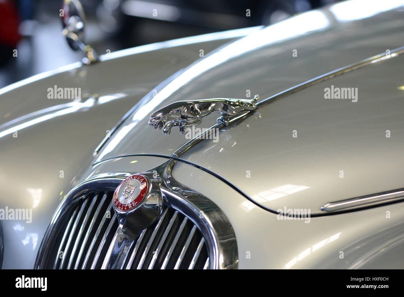 Jaguar Car Logo Stock Photo 136783265 Alamy