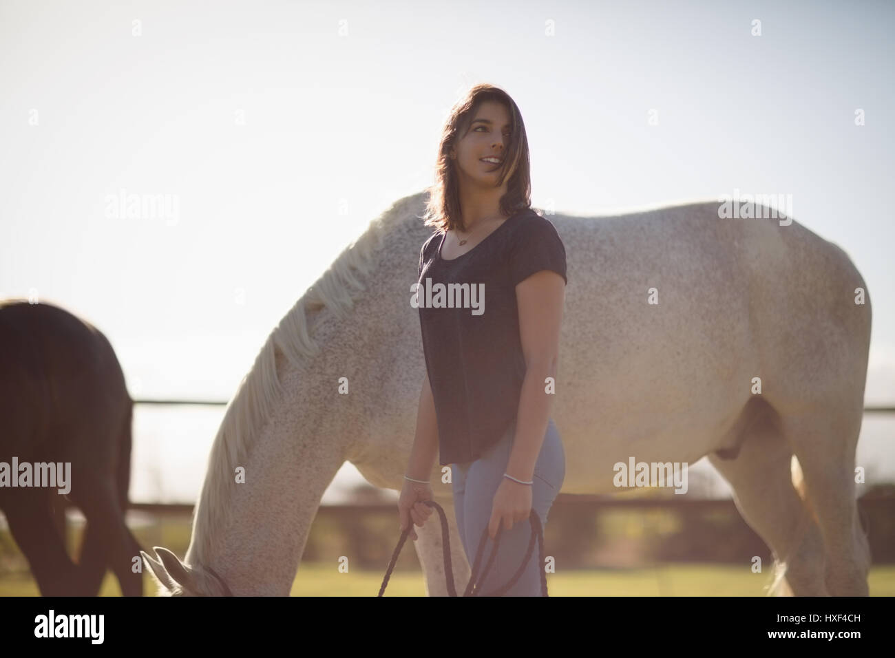 Beautiful woman holding horse rein in farmland on a sunny day - Stock Image