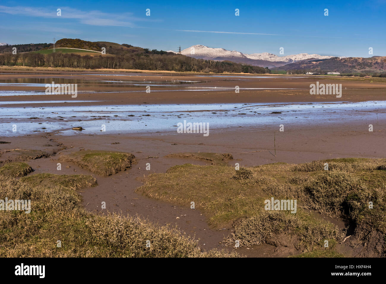 The river Esk estuary in Cumbria with snowy lakeland hills behind. - Stock Image