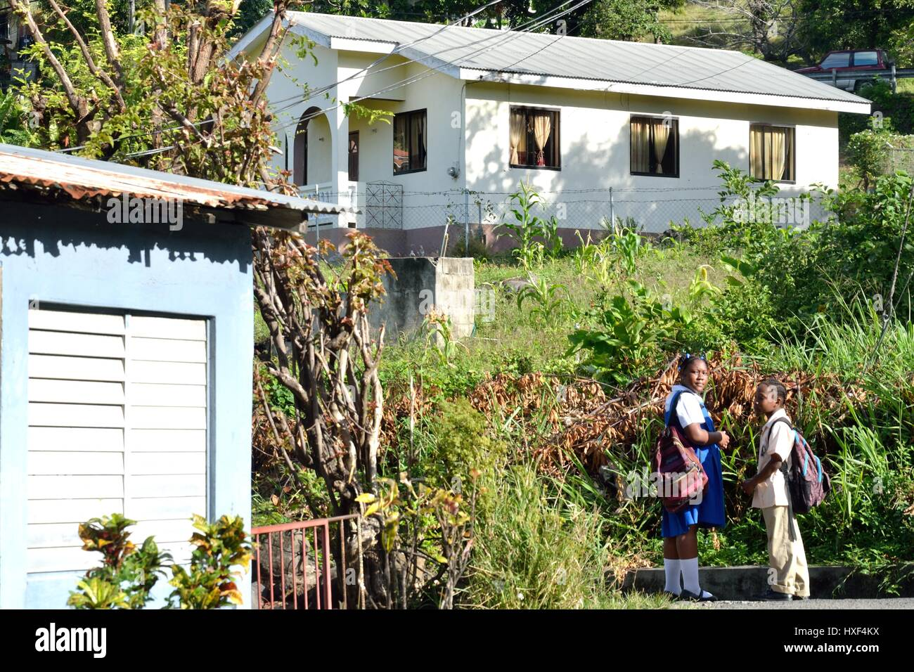 ST LUCIA CARIBBEAN 17  January  2015:  Caribbean schoolgirls in village - Stock Image