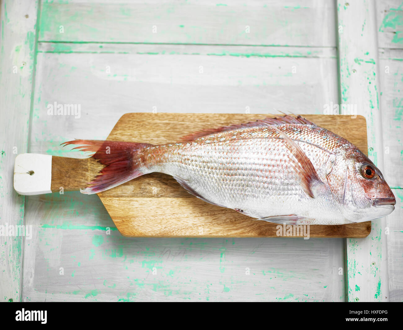 Fresh red snapper fish on chopping board ready for filleting - Stock Image