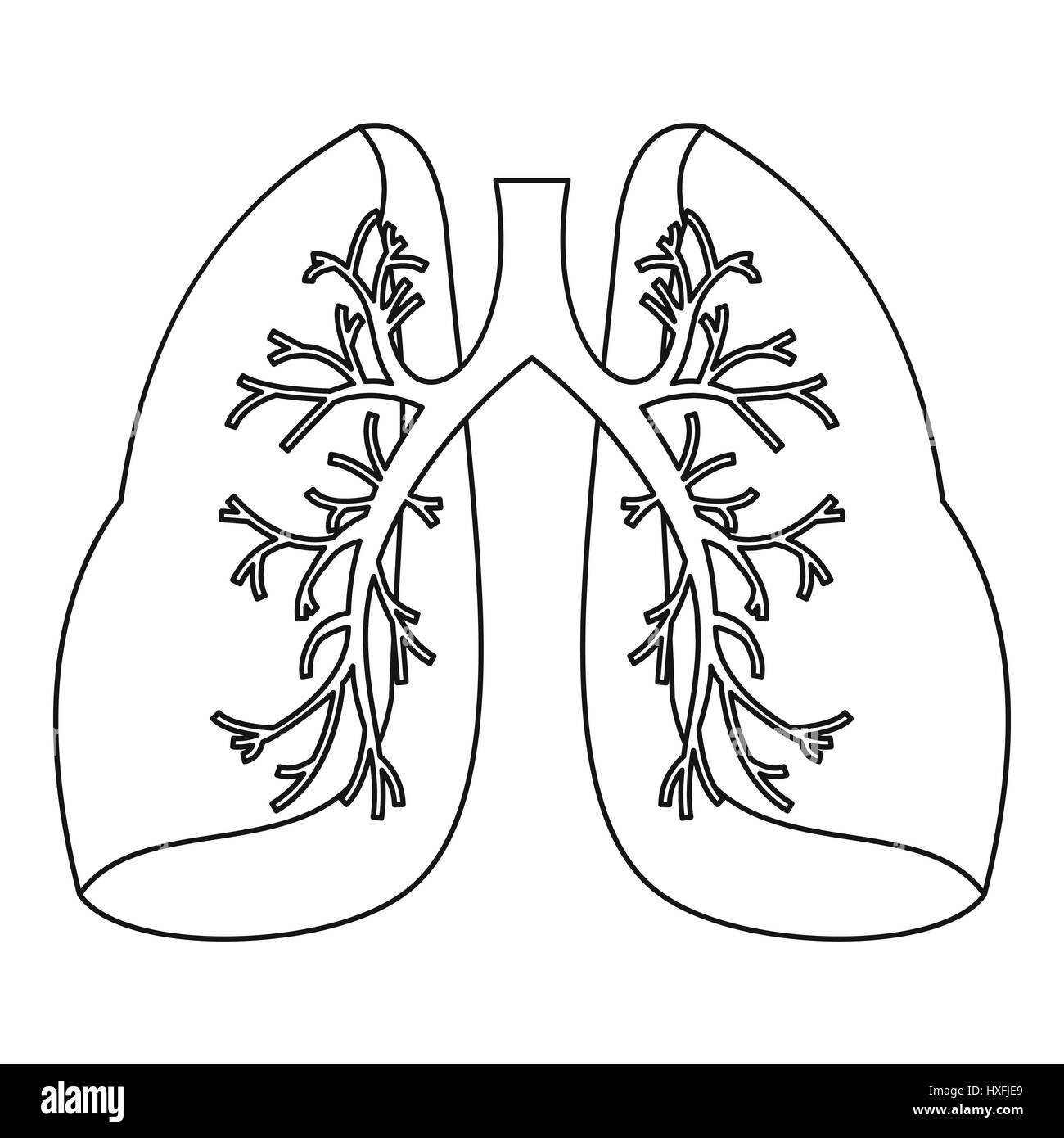 Lungs icon, outline style - Stock Image