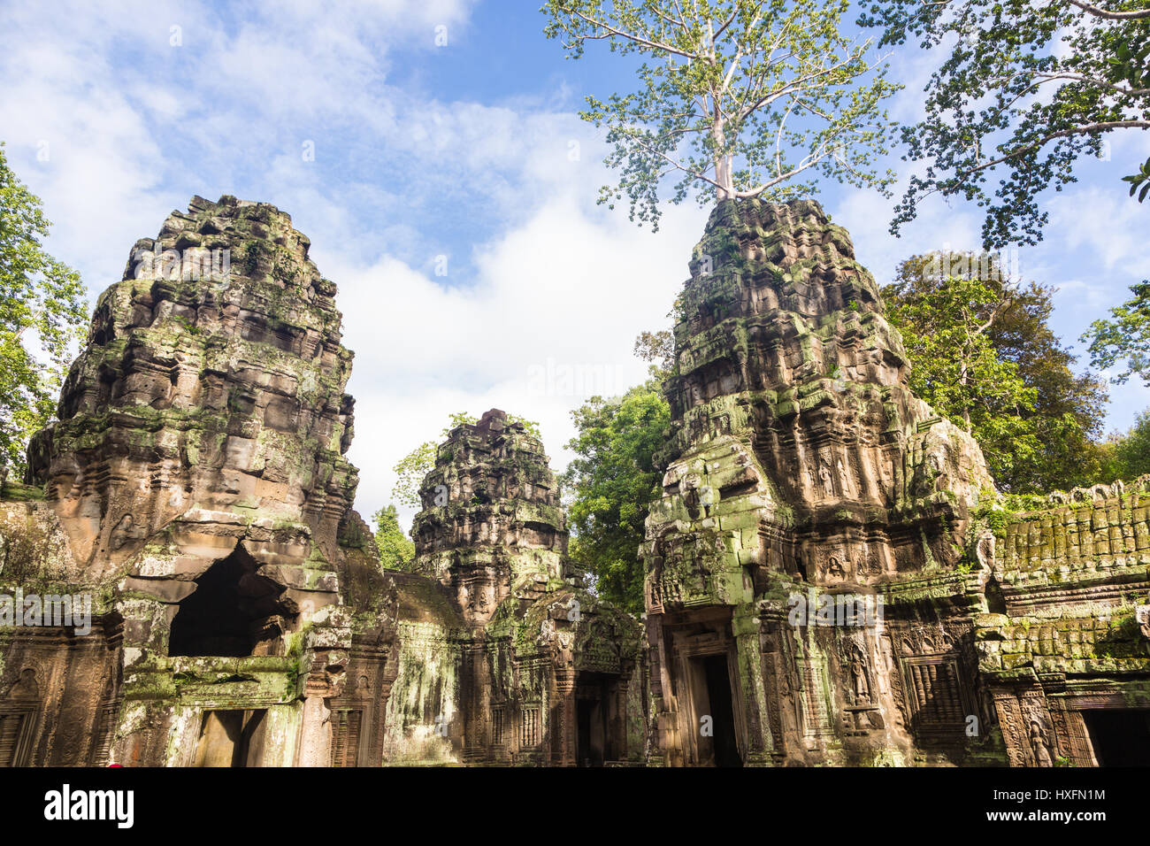 The ruin of the ancient Ta Phrom temple in the Khmer complex of Angkor near Siem Reap in Cambodia. This is one of - Stock Image