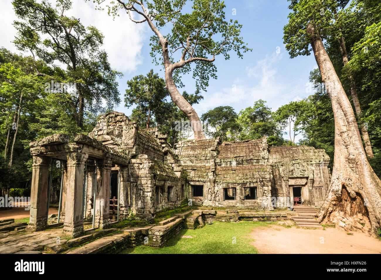 Famous Khmer Ta Prohm temple in the Angkor Wat complex in Siem Reap, Cambodia where nature merges with stones. - Stock Image