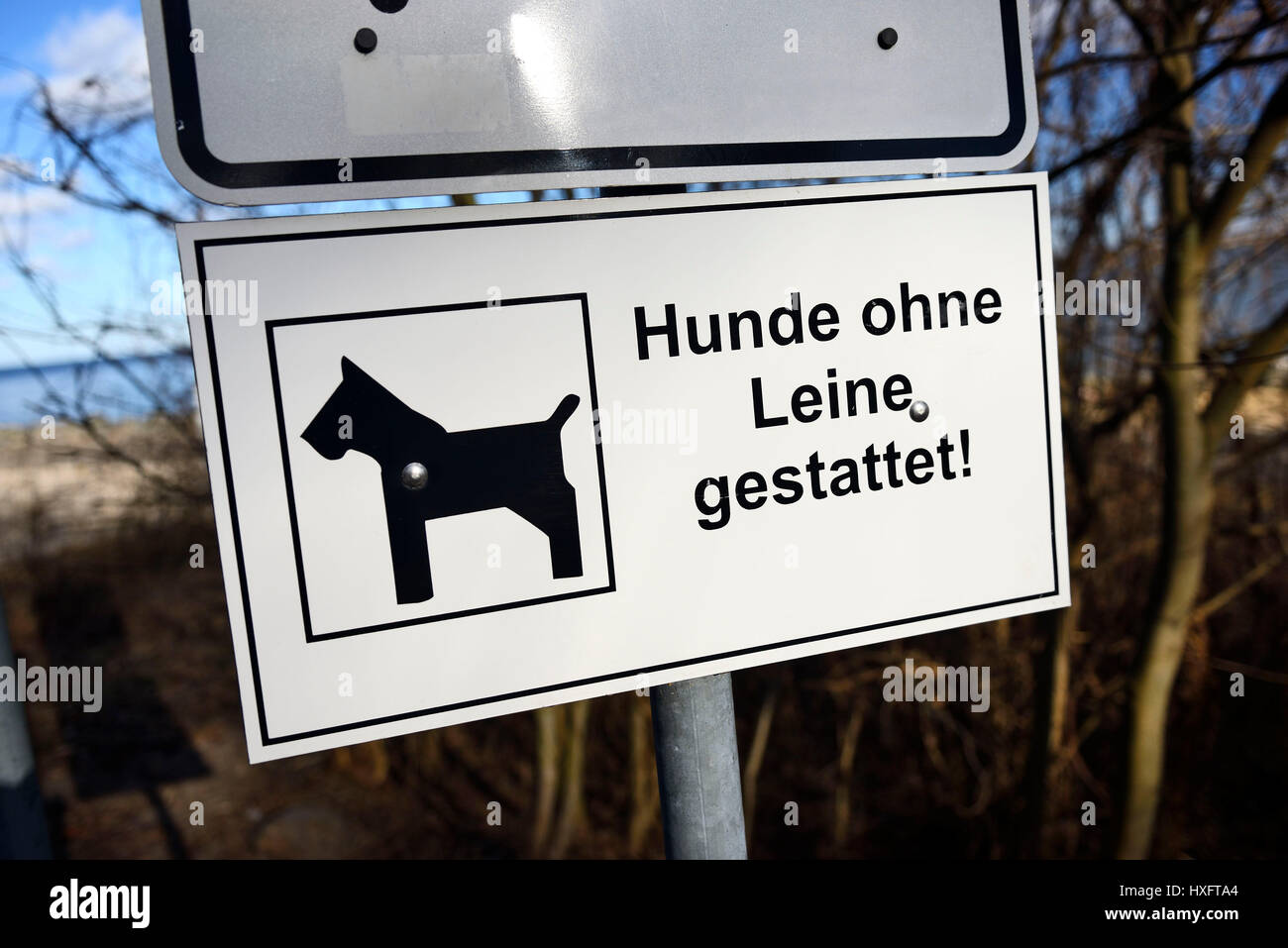 Dogs permits without rope, sign, Hunde ohne Leine gestattet, Schild Stock Photo