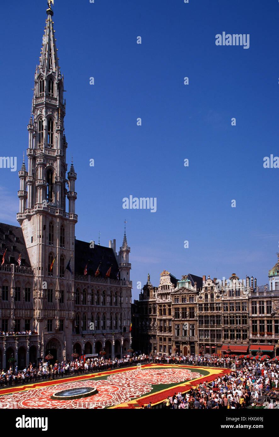 Hotel de Ville and flower carpet,  Grand Place Brussels Belgium - Stock Image