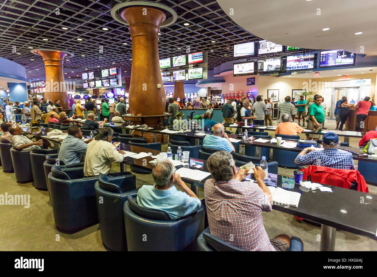 HALLANDALE BEACH, USA - MAR 11, 2017: People betting and gambling in the Gulfstream park casino in Hallandale Beach. - Stock Image