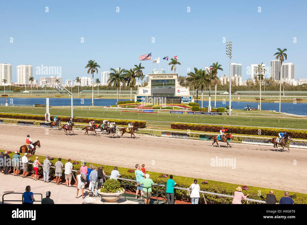 HALLANDALE BEACH, USA - MAR 11, 2017: Horse racing at the Gulfstream Park race track in Hallandale Beach, Florida, - Stock Image