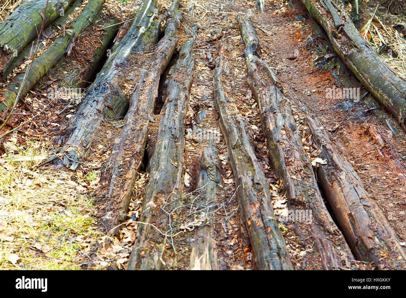 old rotten wooden bridge, decrepit old rotten boards - Stock Image